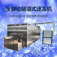 300kg全自动果肉流态化速冻机
