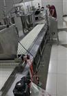奶枣生产设备