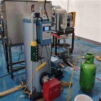 全自动蒸汽发生器燃油蒸汽锅炉