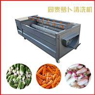 TQX-1000洗萝卜机器全自动白萝卜清洗机红薯去皮机