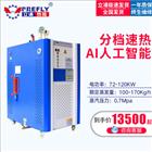 LDR0.15-0.7水洗机烘干机配套可用108kw电蒸汽发生器