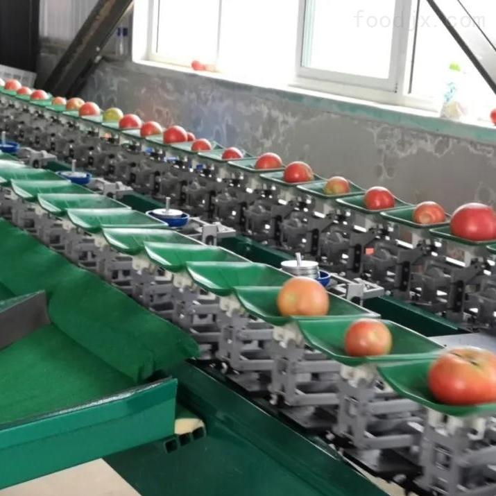 苹果分级大小机器厂家 苹果重量分选机