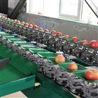 XGJ-PG苹果分级大小机器厂家 苹果重量分选机