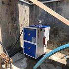 LDR干燥电蒸汽发生器