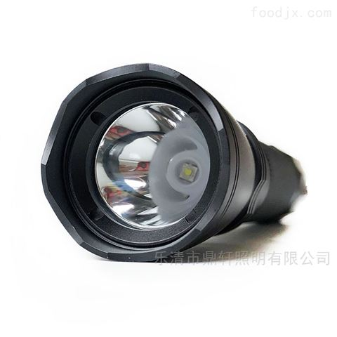 溫州燈具廠石油化工LED防爆手電筒
