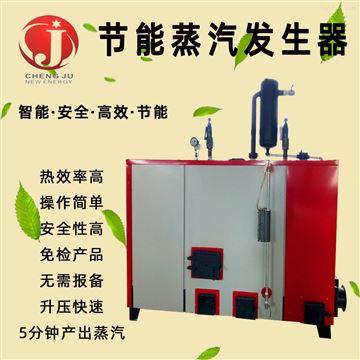 高温杀菌食品蒸煮生物质蒸汽发生器