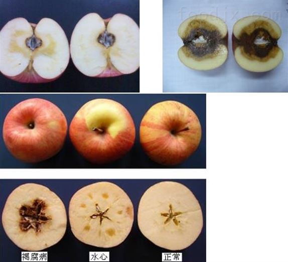 苹果分选设备