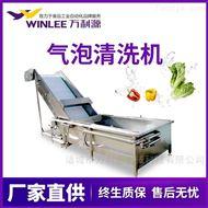 WLYQX-8000冲浪式草莓蓝莓清洗机加工流水线