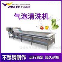 白菜气泡清洗机/蔬菜清洗设备/净菜加工设备
