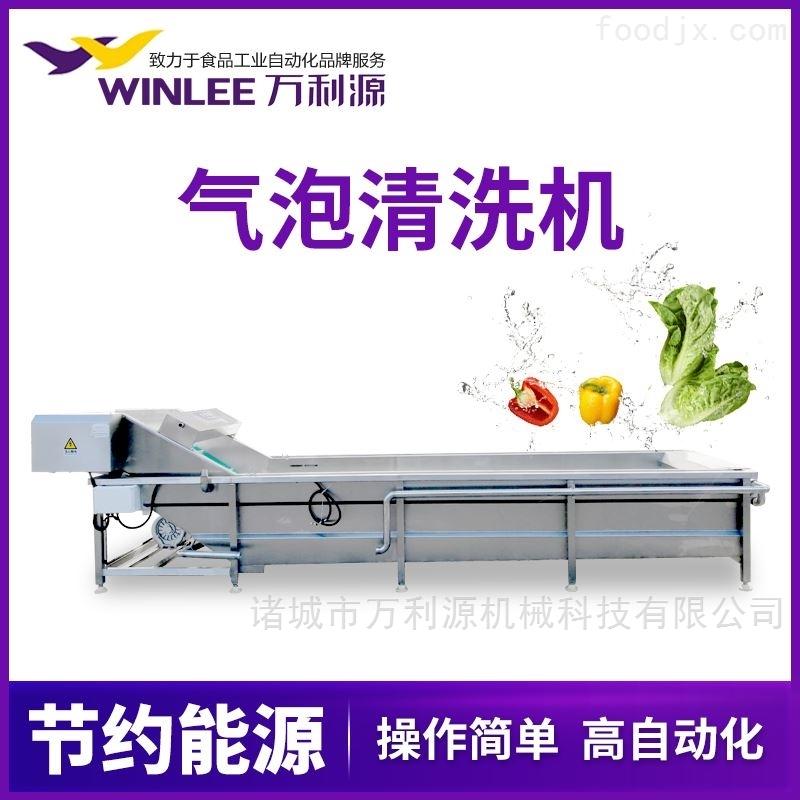 蔬菜气泡清洗机 枸杞清洗机 芹菜清洗机