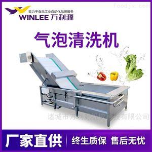 WLYQX-5000节水型秋葵辣椒胡萝卜气泡清洗机