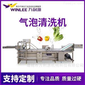 WLYQX-6000大型连续式大红枣冬枣气泡清洗机