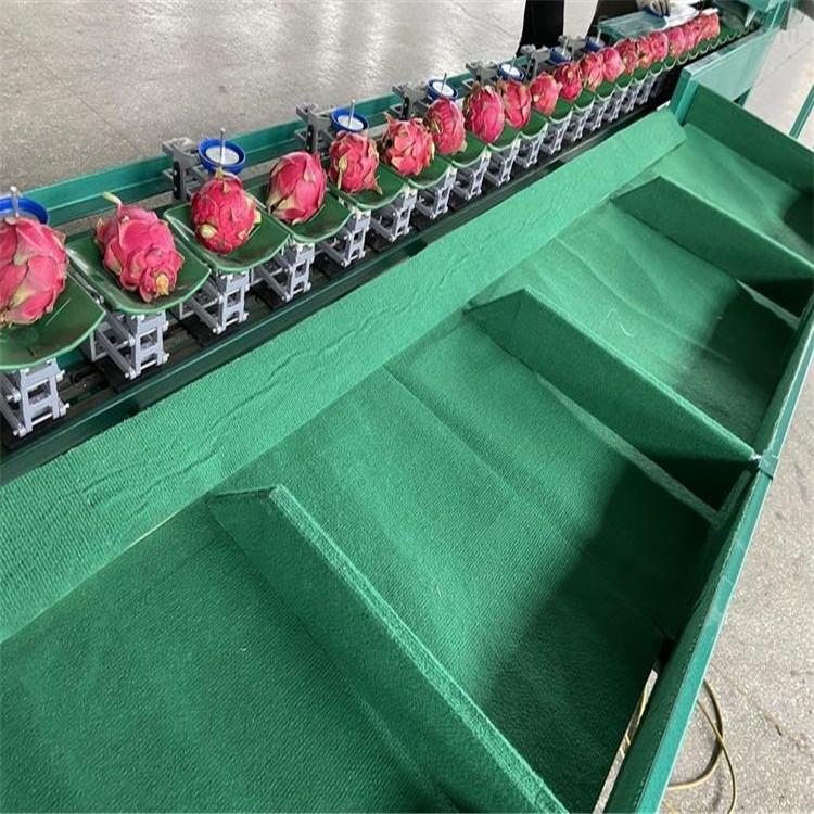 山西油桃分选机 油桃产后处理设备哪家便宜