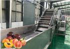 枇杷原浆生产加工设备