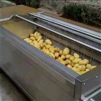 毛刷辊土豆红薯魔芋去皮机厂家定制