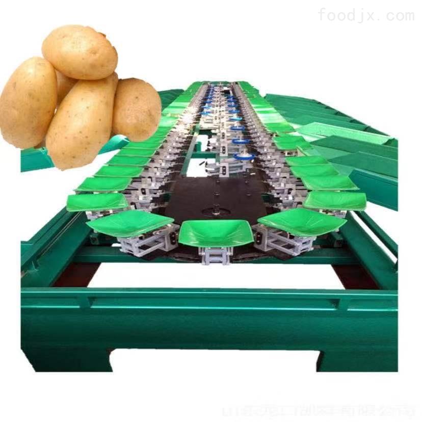 马铃薯分选机 提高土豆品质 武川有卖的么