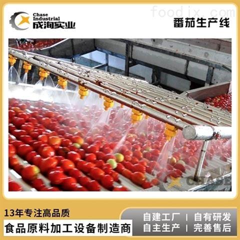 番茄汁 饮料果汁生产线  NFC纯果汁加工设备