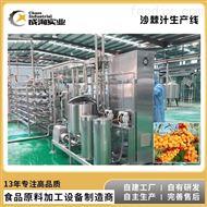 CXL-GZ* 全自动柠檬汁生产线 果蔬加工设备