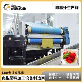 CXL-JS沙棘树莓果汁生产加工 NFC纯果汁成套设备