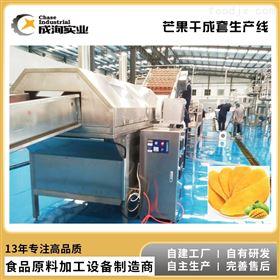 CXL-GG芒果柠檬蔬菜干加工 果干果脯成套生产线