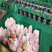 猕猴桃选果机水果该怎样分选分级设备供应商