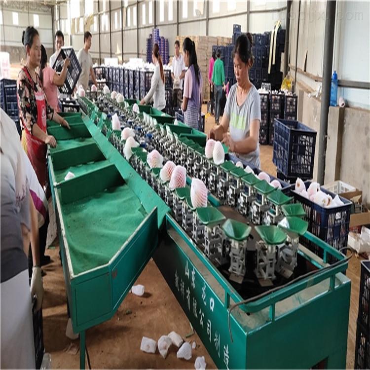 阿克苏水果分果机新疆苹果分选设备分级机