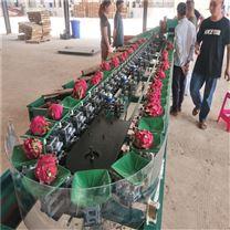 福建火龙果分级好设备水果选果机厂家供应
