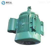 TEE电机QSFA100L4A-40H