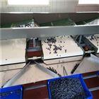 6XL-1江苏蓝莓直径分选设备水果选果机厂家供应