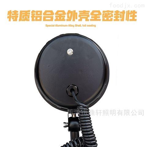 鼎轩照明防爆泛光工作灯35W氙气升降防汛灯
