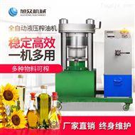 XZ-YZ150小型液压榨油机