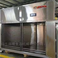HL-200全自动芒果干烘干机热风式