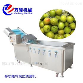 QB-25多功能红薯清洗机品种繁多