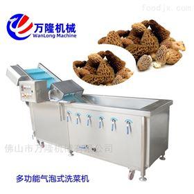 QB-25毛刷番薯清洗机优质设备