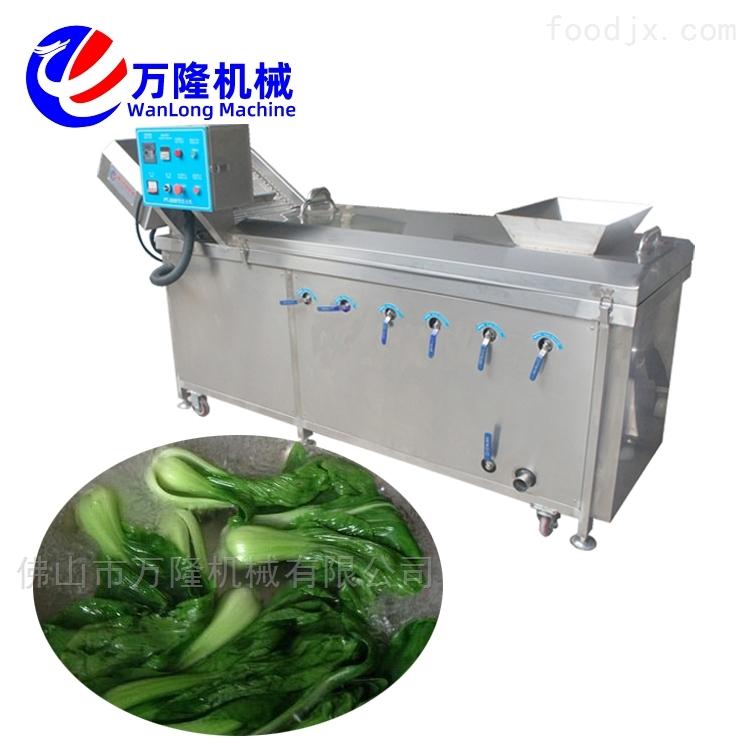 多用途加工清洗大白菜包菜冬瓜预煮机