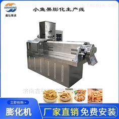 XH-65型小鱼果膨化机生产线 鑫弘膨化设备