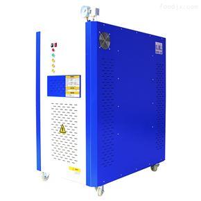 120KW电蒸汽发生器用于暖气片设备保养
