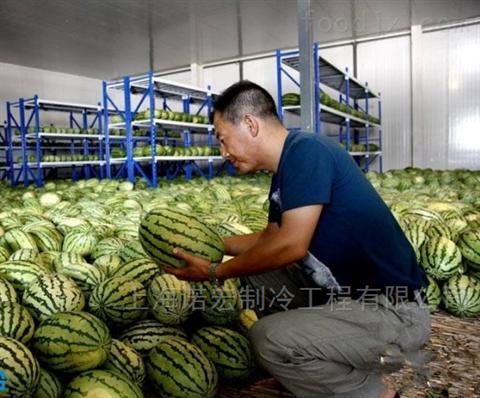 西瓜在保鲜冷库中长期储藏的好办法