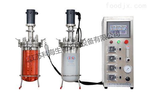 KRH-DEJ10L二联平行机械搅拌玻璃发酵罐