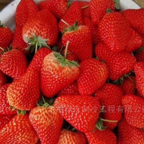草莓速冻冷库贮藏技术