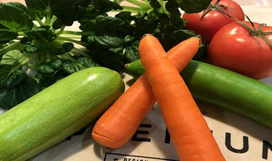江蘇省多舉措抓好當前蔬菜穩產保供工作