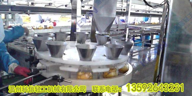 水果罐头生产线