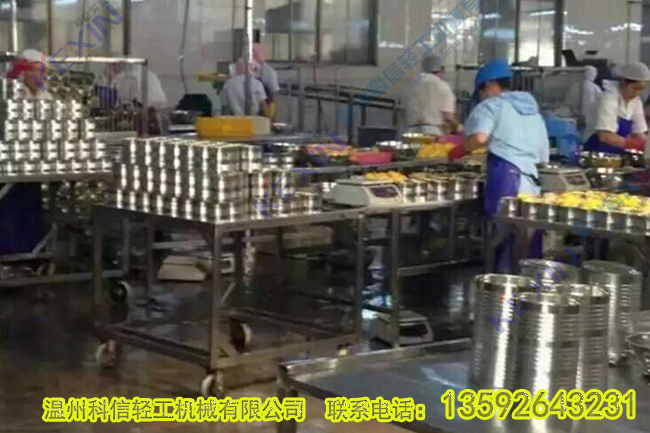 水果罐头生产线设备