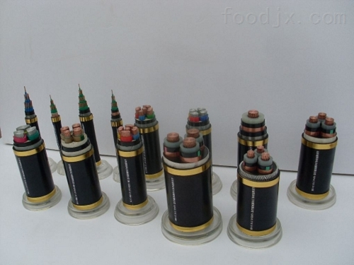 呈贡区耐高温硅橡胶电缆DJFG-2*10