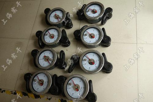 SGJX系列指针表盘测力计
