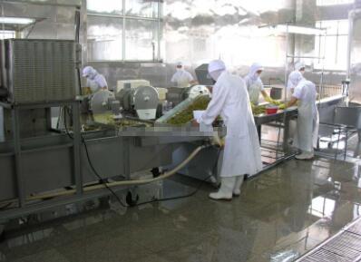 酱腌菜加工生产线